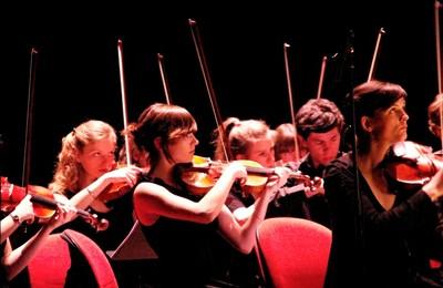Orchestre à cordes ( Récital )