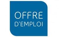 L'Institut français d'Algérie recrute un(e) responsable communication et partenariats
