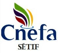 Appel à communication pour un séminaire national de la CNEFA