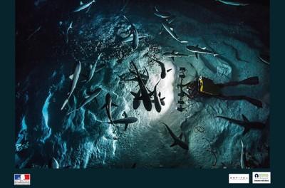 Fonds marins : Entre richesses et vulnérabilités - Sur réservation