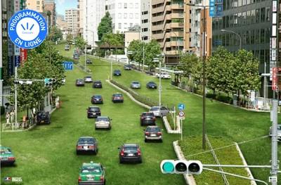 Canicule : Végétaliser les villes, « c'est maintenant et c'est encore possible »