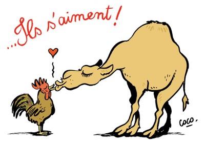 France - Algerie, dessins de presse