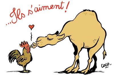 France-Algérie : dessins de presse