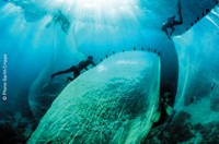 L'économie bleue : est-il possible d'exploiter durablement les ressources des mers et des océans ?