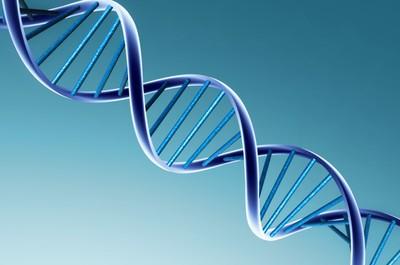 La biologie synthétique : opportunités et dangers