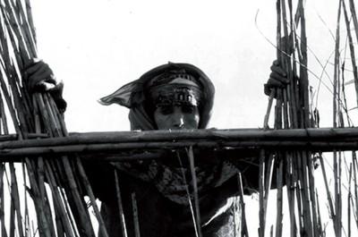 La Nouba des femmes du Mont Chenoua