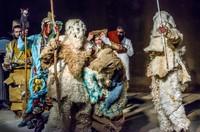 Phénomène de l'Ayred dans le paysage culturel algérien