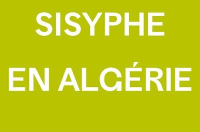 SISYPHE EN ALGERIE