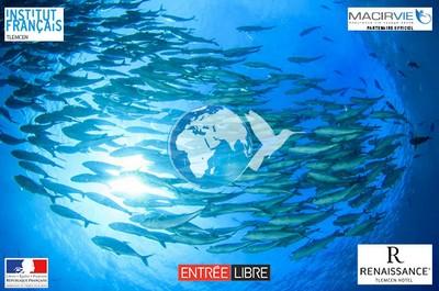 «L'économie bleue : est-il possible d'exploiter durablement les ressources des mers et des océans ?»